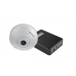 iDS-2CD6412FWD/C (2.8)